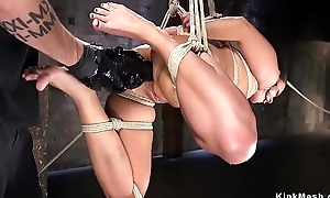 Hogtied beauty gets anal fisted