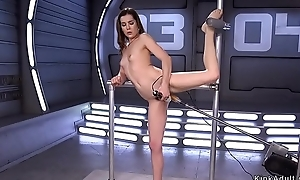 Flexible hairy floosie bonking machine